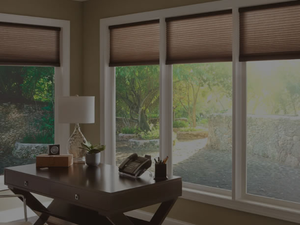 Automated Blinds & Curtains