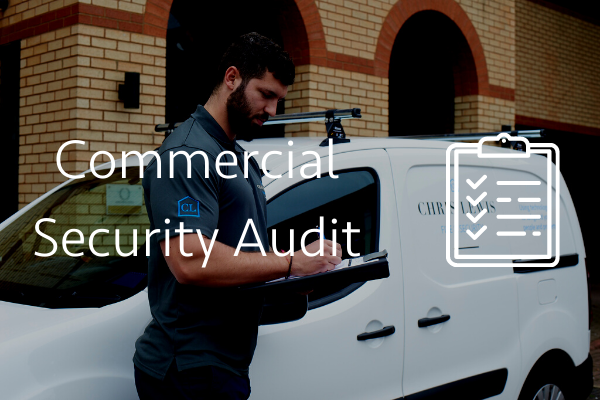 Commercial security audit