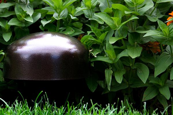 Smart Garden (1)